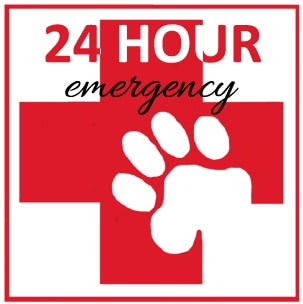 Emergency Veterinarian In Marion